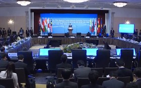 RCEP部長級會議現場一瞥。(圖源:VTV視頻截圖)