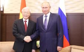 阮富仲總書記與俄羅斯總統普京會談。(圖源:越通社)