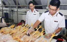 政府總理最近頒行關於食品安全行政違規懲處《議定》,新處罰額規定比前高。(示意圖源:互聯網)