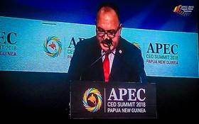 巴新總理奧尼爾在會議上呼籲APEC成員經濟體通過推動自由貿易、擁抱數字化等方式致力推動包容性增長。(圖源:APEC)