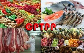 CPTPP協定促使農業轉型。(示意圖源:互聯網)