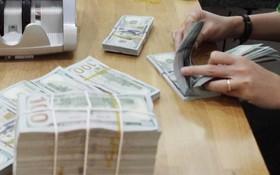 亞行促進越南金融普及發展。(示意圖源:互聯網)