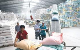 CPTPP 協定生效後大米出口會更順利。