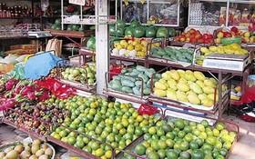 大量南部水果銷往北部。(示意圖源:互聯網)