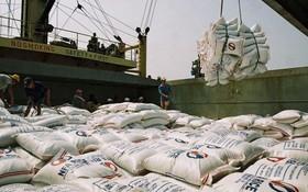 海關總局:今年1月份的大米出口數量約達43萬7552噸,創匯1億9531萬美元。(示意圖源:互聯網)