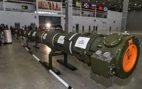 美指控俄的9M729巡航導彈違反《中導條約》的規定。(圖源:互聯網)