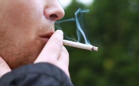 吸煙飲酒等可能導致骨質疏鬆。(示意圖源:互聯網)