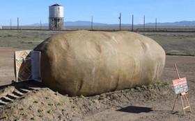 旅舍外形就像一個巨型薯仔。(圖源:AP)