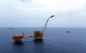 越南國家油氣集團(PVN)的24個海外油氣勘探項目正在辦理結束手續,共損失7億7300萬美元。(示意圖源:T.T)