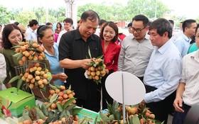 貴賓參觀各攤位並品嘗荔枝。