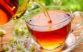 夏季喝5種茶能美容養顏。(示意圖源:互聯網)