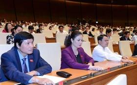 國會代表按鈕通過2020年國會監察計劃《決議》。(圖源:明陲)