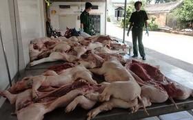 市公安部門配合有關職能力量查獲一批來歷不明的豬肉。(圖源:誠鐘)