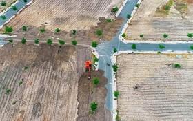 挖掘機把土石覆蓋道路以隱瞞阮玉事的違規建路行為。