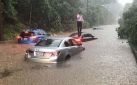 司機爬到車頂待救。(圖源:互聯網)