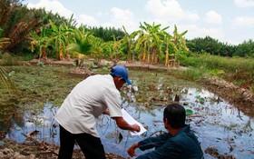 民眾可在農業用地上建設為農業生產服務的各項工程。(圖源:TL)