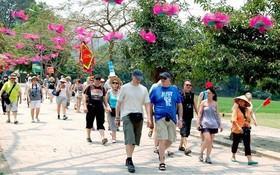 2019年越南國際遊客人數將繼續增長。