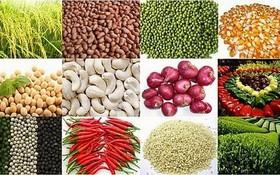 我國農產品加工工業在規模和附加值方面都蓬勃增長,每年達5% 至7%。(示意圖源:互聯網)