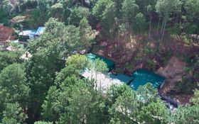 松林中建有一排堅固的住房。(圖源:段堅)