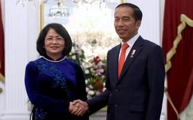 國家副主席鄧氏玉盛(左)會見印尼總統佐科。(圖源:越通社)