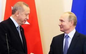 土總統埃爾多安(左)與俄總統普京握手。(圖源:DPA)