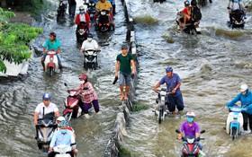 本市每逢潮汛高漲,多條街道就會嚴重受淹。(圖源:友科)