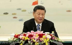 中國國家主席習近平。(圖源:越通社)