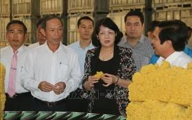 國家副主席鄧氏玉盛(中)及中央工作團參觀同奈橡膠總公司的橡膠加工廠。(圖源:越通社)