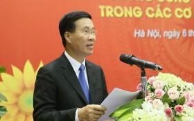 中央宣教部長武文賞在研討會上發表講話。(圖源:VOV)