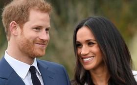 哈里王子夫婦。(圖源:路透社)