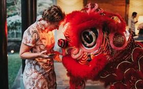 外國遊客對舞獅活動很感興趣。