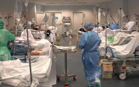 圖為意大利北部貝加莫省一間主要醫院的急症室實況。(圖源:Sky News)