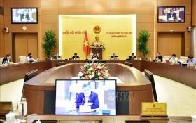 國會常務委員會第四十三次會議現場。(圖源:越通社)