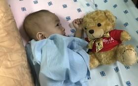 寓居芹苴市的明善(兩歲)是獲FLG集團贊助施手術經費的首名病童。