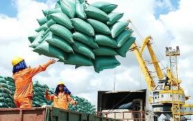 搬運大米準備出口。(圖源:工商部)