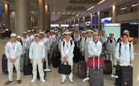 2019年赴外國工作的越南勞工總數為14萬7387人。(圖源:互聯網)