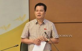 國會的社會問題委員會常務副主任裴仕利 在會上發言。(圖源:Quochoi.vn)