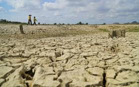 平順省的重要水利庫乾涸露出龜裂湖底。(圖源:越國)