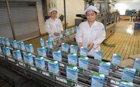 越南奶品公司產品外銷中國市場。
