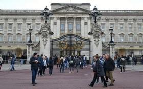 著名王室景點白金漢宮。(圖源:互聯網)