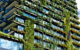 許多綠化將有助大廈、住房節省造涼能源。