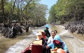 市民在紅樹林旅遊區遊玩。(圖源:互聯網)