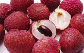 荔枝最高價格每公斤4萬至4萬5000元。(示意圖源:互聯網)