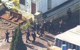 作為對一個國際毒品進口團伙長達7年調查的一部分,警方正在悉尼進行搜捕。(圖源:互聯網)