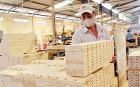 今年上半年,木材與木製品出口額約達49億8000萬美元,同比增2.4%。(圖源:阮幸)
