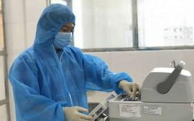 德農CDC衛生工作者對樣本進行白喉桿菌檢測。(圖源:中新)