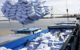 圖為大米出口裝船。(示意圖源:越通社)