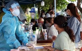 峴港逾 5400 青年自願奔赴防疫一線。(圖源:田升)