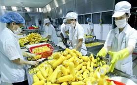 農產品出口額下降。