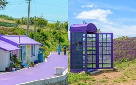 放眼望去,整座島嶼的道路房屋以及電話亭全漆上紫色。(圖源:互聯網)